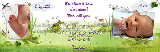 faire part bapteme chevalier